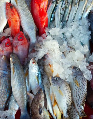 pescado bajo coste curso cooklovers